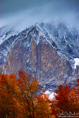 Of Fire And Ice (rosacruzjl) Tags: colorado crestedbutte fall gunnison autumn beautiful change cloud color country drama dramatic forest landscape mountain nature orange outdoors peak pine pretty red rural scenery scenic season sky snow storm tree view weather wilderness