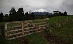 winters last days (Paul J's) Tags: landscape mountain volcano winter mttaranaki taranaki hastingsroad farm farmgate