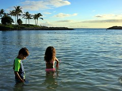 08-28-17 Family Vacation 11 (Leo & Luna) (derek.kolb) Tags: hawaii oahu koolina family