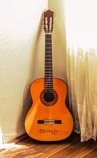 Guitar / Musical Instrument