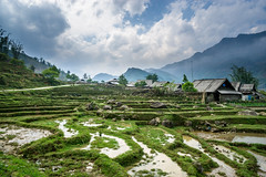 Village and Paddies (gianluca.scortechini) Tags: sapa vietnam paddies rice water mountains mountain village green travel sony alpha5100 clouds paddy