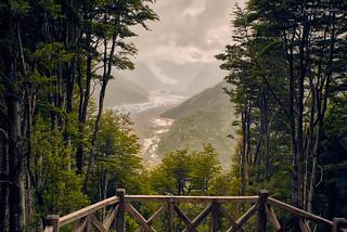 Mirador glaciar del Michimahuida - Parque Nacional Pumalin (Patagonia Chile)