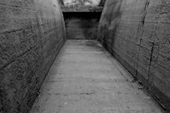 The Beginning of the End (LookSharpImages) Tags: lime oregon limeoregon abandoned abandonedspaces