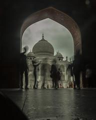 Arch_Taj_Mahal (Sudharsan Ravikumar) Tags: taj mahal agra fort cwc delhi chennai weekend clickers nbc incredible india chained controversy yamuna architecture mumtaz shiva temple sr sudharsan ravikumar long exposure nd