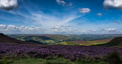 hope valley (Phil-Gregory) Tags: nikon d7200 sigma18250macro wideangle ultrawide national nature nationalpark naturalphotography naturalworld natural naturephotography countryside colour heather purple higgertor hopevalley scenicsnotjustlandscapes clouds sky