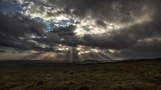 Dartmoor 01