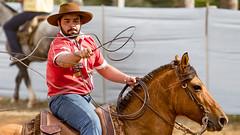 Olhar atento (Ars Clicandi) Tags: brazil brasil parana jaboti prova do laço comprido peao peão boiadero boiadeiro cowboy paraná br