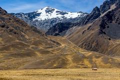 The Altiplano or High Plains, Peru (Aethelweard) Tags: puno peru altiplano highplains cusco hut scale efs 18135mm f3556 is stm 100d efs18135mmf3556isstm