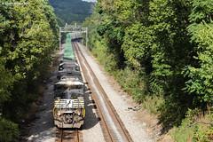 Green Walls (nrvtrains) Tags: intermodal trees 201 greenhill signals norfolksouthern elliston virginia unitedstates us