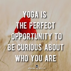 Yoga is the perfect opportunity to be curious about who you are (Inspirational Life Quotes) Tags: quote quotes inspirational motivational yoga spiritual meditation life wise wisdom photo buddhism inspiring peace faith
