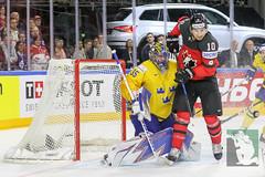 IIHF17 18-5-17-124.jpg (sushysan.de) Tags: canada cologne deb day13 deutschereishockeybund eishockey finals goldmedal iihf icehockey koeln pix pixsportfotos paris sweden weltmeisterschaft worldchampionship pixsportfotosde sushysan sushysande