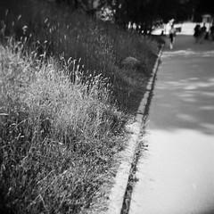 2017-06 - 088M - 03 (sarajoelsson) Tags: holga blackandwhite svartvitt sweden stockholm mediumformat mellanformat 120 film digitizedwithdslr ilford squareformat squares vignetting toycamera 120gn ishootfilm filmisnotdead teamframkallning urban city solna hp5 holgacamera 2017 june summer summertime sunny scannedwithdslr