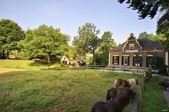 Rozendaal (Fred van Daalen) Tags: rozendaal veluwe veluwezoom gelderland netherlands