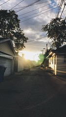 alley sunset 🌅 (juanjose41) Tags: color chicago youngphotographers amateurs natureshots photography nature alley sky sun sunset