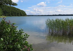 Sommersee