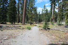 Dusty trail, with the trailhead in sight (rozoneill) Tags: lassen volcanic national park chaos crags crag lake manzanita wilderness hiking california redding