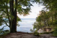 Ausblick von der Steilküste (draussenansichten) Tags: geologieundgeomorphologie gestein jasmund kliff kreide landschaft landschaftsformen rügen steilküste