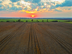 (Daniel000000) Tags: field wisconsin sunset light sky clouds farm tracks dirt brown green pink country rural horizon midwest usa america trees fall north drone dji djispark spark uav