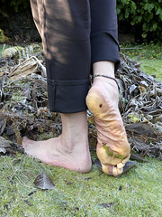 Cold sole (Barefoot Adventurer) Tags: barefoot barefooting barefoothiking barefeet barefooter barefooted baresoles barfuss wrinkledsoles walking callousedsoles callouses toughsoles healthyfeet happyfeet hardsoles winterbarefooting winter frostybaresoles freedom flexiblefeet ferns frosty coldsoles cold heelcracks naturalsoles naturallytough connected earthsoles earthing toes texture tough anklet