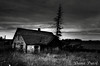 17_Sept_12_01 (Dana Prost) Tags: albertacanada bw farmhouse ruraldecay