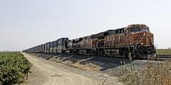 BNSF 3925 West (lennycarl08) Tags: burlingtonnorthernsantafe burlingtonnorthernsantaferailroad bnsf train trains railroad northerncalifornia california stocktonsub