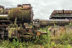 Natural Camouflage (Kingmoor Klickr) Tags: 528042 441623 reko jumbo dr dampflokmuseumhermeskeil falzinfalkenberg falkenberg abandoned rust