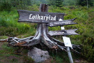 2017_07_11_0010_Lotharpfad Kopie