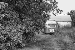 Air Stream Trailer (gabi-h) Tags: airstreamtrailer monochrome blackandwhite consecon gabih princeedwardcounty summer bushes shrubs grass garage