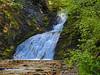 "Sweet Creek Falls (jimgspokane) Tags: sweetcreekfalls waterfalls creeks mountains camping forests trees ""nikonflickraward"" otw"