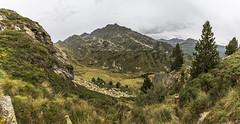 Pleta del Manegor i Obaga de Juclar desde Anrodat, Principat d'Andorra (kike.matas) Tags: canon canoneos6d canonef1635f28liiusm kikematas anrodat pletadelmanegor valldincles canillo andorra andorre principatdandorra pirineos paisaje panoramica juclar arboles montañas nature nubes lluvia lightroom6 senderismo excursión андорра