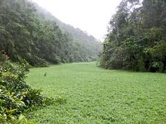 "DSCF2588 (JBBTaipei) Tags: taiwan yilan ""cold lake yuanshan"