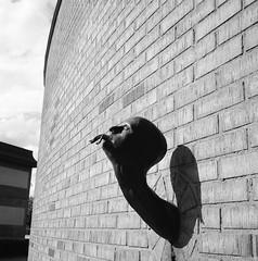 Källemo (rotabaga) Tags: sverige sweden svartvitt värnamo blackandwhite bw bwfp lomo lomography lubitel166 mediumformat mellanformat 120 6x6 diy