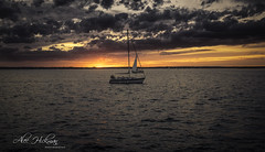 Sailboat in a Sailboat (Alec_Hickman) Tags: sailboat sunset ocean sea water colors light shadow landscape seascape clouds sky boat dusk