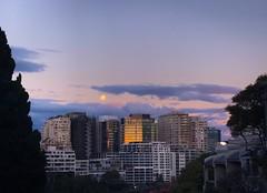The Moon is rising, the Sun is setting (doubleshotblog) Tags: australia sydney mcmahonspoint streethunt reflection sun moon moonrise sunset