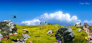 Droit devant vous ..... le Mont-Blanc