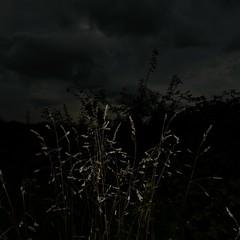 MARE NECTARIS (Grant Simon Rogers) Tags: grantsimonrogers artistphotographer ƒ mademe artist photography photopsychotherapy individuation flasher flash flânerie thefirst10000 marenectaris sea solent hillhead hampshire westeaxnarīce weird hobbits trust suspicious local littleengland trousersrolled terraincognita leica leicacameras leicaq leicasf40flash sooc straightoutofthecamera nofilter cookinginthecamera weallneedahug flashphotography keepsharingthebeauty jackcardifffanclub powellpressburger technicolor colour beach enough