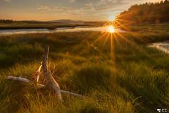 ''Quand le jour s'endort!'' (pascaleforest) Tags: payage landscape passion nikon nature sunset coucherdusoleil gaspésie québec canada sigma sky ciel sun soleil eau water marais goldenhour doré herbe vert green montagne montain rayons