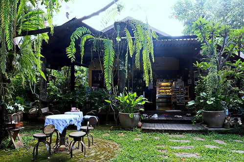 Gardens and Coffee in Chiang Mai.