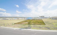 343/Lot 343 Watervale Cct, Chisholm NSW