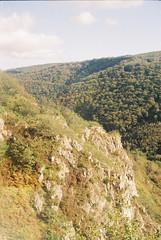 Teign Valley 6 (avenwildsmith) Tags: film 35mm nature devon countryside landscape analog analogue kodak retinette 1b grain england britain wild wilderness teign valley trees view 35mmfilm kodakretinette1b