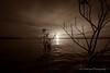 Dramatic Sunset! (K.Yemenjian Photography) Tags: dslr lake georgia clarkshill clarkshilllake water waves sun sunlight sunbeam reflection dramatic canont5i canon landscape island southeast sunset sepia t5i 700d canon700d placescity