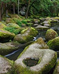 Im Waldnaabtal (Gr@vity) Tags: waldnaabtal waldnaab oberpfälzerwald bayern bavaria canon 5dsr fluss river