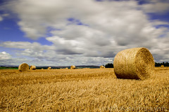 Hay Bale (sidrog28) Tags: hay bale straw long exposure newcastle uk north northeast northumberland nikon