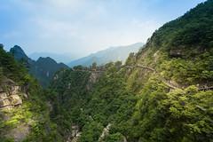 Da Ming Mountain / 大明山