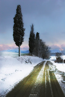 Naif invernale