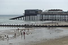 Cromer Pier [235/365 2017] (_ _steven.kemp_ _) Tags: cromer pier beach sea norfolk sand landscape seascape scenery people ocean shore coast seaside