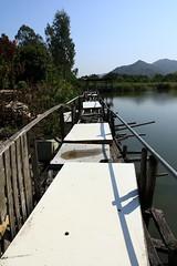 Fallen Bridge (superzookeeper) Tags: canoneos5dmarkiv ef2470mmf28liiusm 5dmk4 5dmkiv hk hongkong namsangwai water river lake bridge ruins eos yuenlong digital village