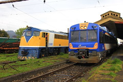 EFE/TrenCentral y FESUR (Domingo Kauak) Tags: tren chile ferrocarril trencentral temuco d16000 alco ge tld593 renfe fiat locomotive locomotora