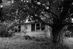 the old farmhouse (Paul Lundberg) Tags: canonat1 canon28mmf28 ultrafinextreme400 kodakhc110 plustekopticfilm7300 film 35mm farmhouse blackwhite
