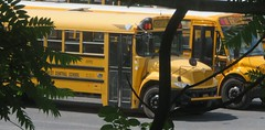 First Student #091992 (ThoseGuys119) Tags: firststudentinc schoolbus longisland shorehamny ic ce ce200 maxxforce7 sullivanwestcsd youngsvilleny